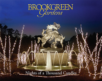 Brookgreen - Nights of a Thousand Candles
