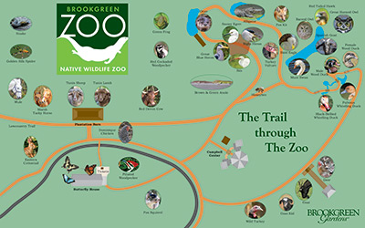 Brookgreen Gardens: The Trail through the Zoo